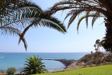Strand tenerife palmbomen van Wouter Nassen