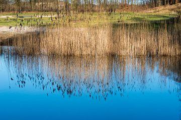 blauwe weerspiegeling van de lucht in het water van Compuinfoto .