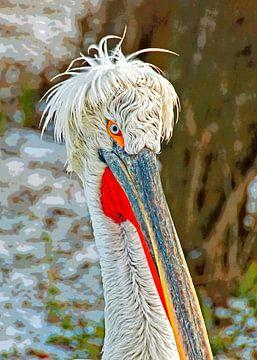 Dalmatian pelican van