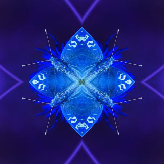 De Blauwe Insecten