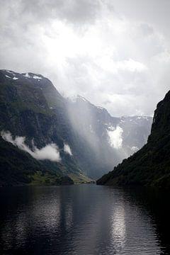 Sognefjord van Kees van Dun