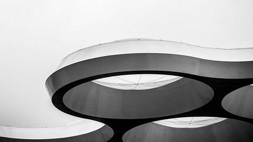 Het Bollendak in zwart-wit van