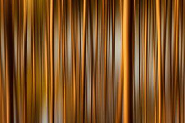 Door de bomen... van Halma Fotografie