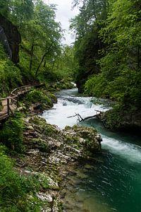Tolmin kloof in Slovenië