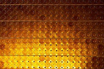Wijnflessen in de kelder van Geert van Kuyck