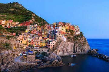 Manarola, Cinque Terre, Italië van Henk Meijer Photography