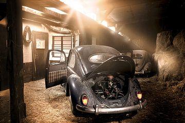 VW Kever Ovali van Ramon Enzo Wink