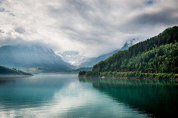 Berge und Gletscher in Norwegen von Ellis Peeters