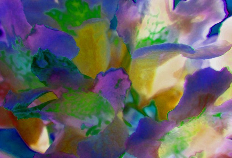 Blütenzauber van Peter Norden