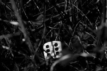 Dobbelsteen in het gras  von Jolien Luyten