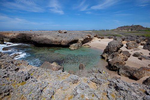Landschap Bonaire van