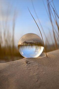 Avond in de duinen van zwergl 0611