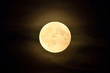 am 07.08.2017... Vollmond *Luna luna* von