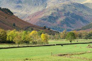 Mooie vallei in de Lake District, Engeland van