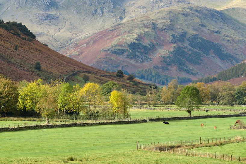 Mooie vallei in de Lake District, Engeland van Jos Pannekoek