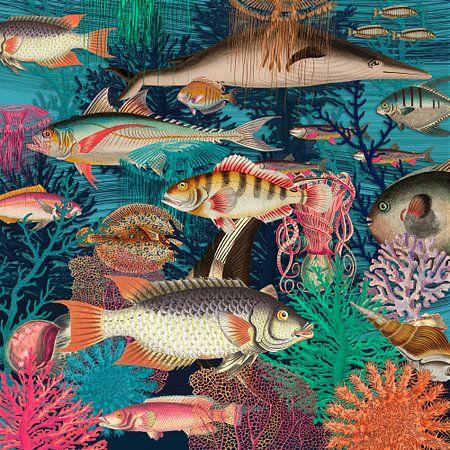 Counting Fish van Marja van den Hurk