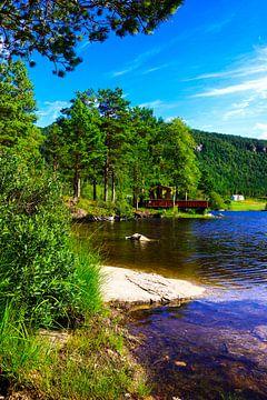 Meer in Noorwegen van Iris van der Veen