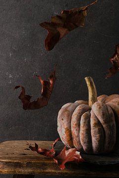 Herfst pompoen van simone swart