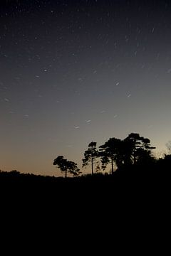 lange sluiterijdfoto van de sterren van Herman van de Bunt