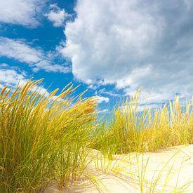 Duin landschap aan de kust met zon en een mooie wolkenlucht van Bas Meelker