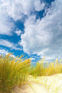 Dünenlandschaft an der Küste mit Sonne und einem schönen Wolkenhimmel von Bas Meelker