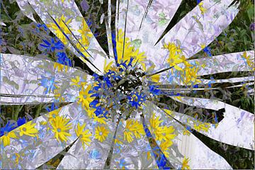 Sonnenhut (Rudbeckia fulgida), abstrakt, Blüte von Torsten Krüger