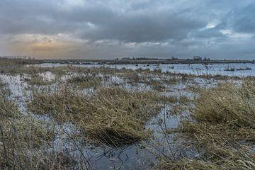 Hooge Boezem - Haastrecht onder water. van Rossum-Fotografie