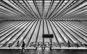 Station Luik-Guillemins (Belgie) von Erik Bertels