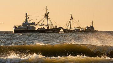 Garnelenschleppnetzfischer unter der Küste von Texel von Ronald Timmer