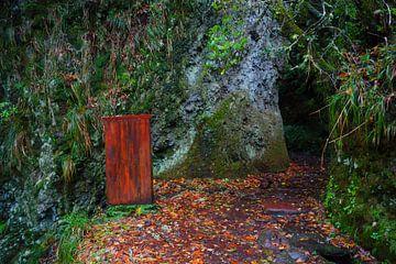 Rood hokje en grijze rotsen in Madeira van