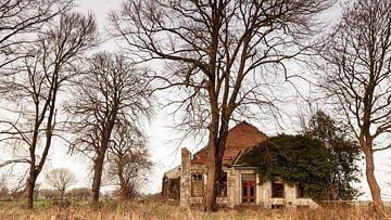 Verlassene Farm von Dick Doorduin