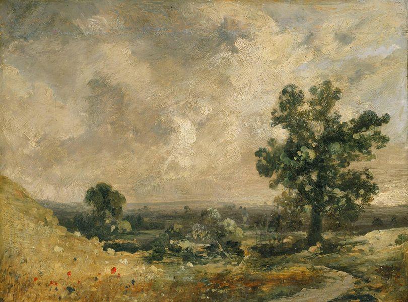 John Constable - Englische Landschaft von finemasterpiece