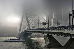 Pont Erasmus dans le brouillard