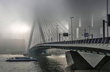Mist bei der Erasmusbrücke von