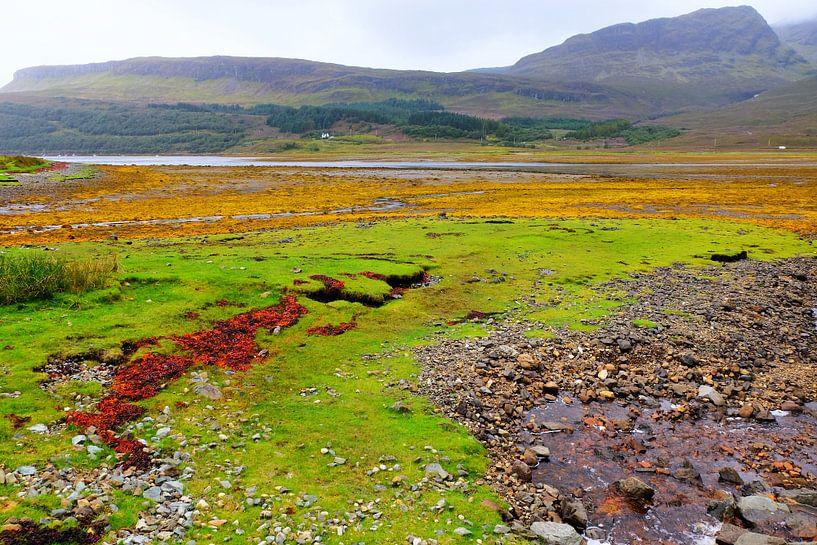 Schotland van Marian Klerx