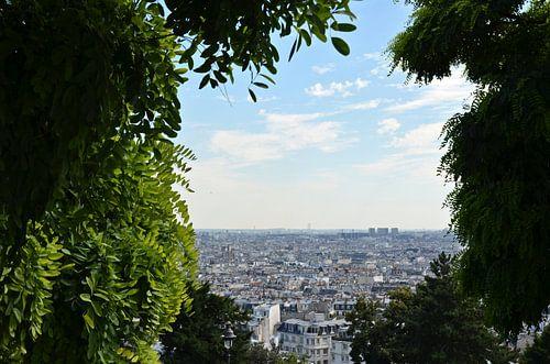 Uitzicht in Parijs van