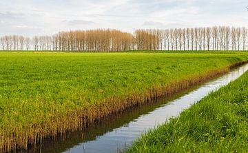 Holländische Polderlandschaft mit Graben von Ruud Morijn