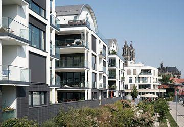 Wohnhäuser am Ufer des Flusses Elbe bei Magdeburg von Heiko Kueverling