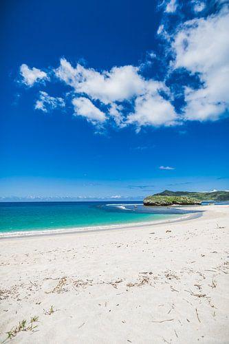 Yoyos beach van Andy Troy