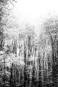 Trees van Maartje Hustinx-van Lanen