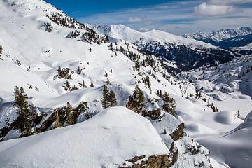 Winter in den Alpen von Peter Leenen