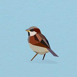 Haussperling (Vogel, Sperling, Polygon)