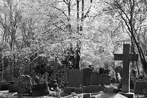High Gate Cemetry Londen sur Marije van den Wijngaard