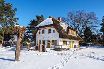 Haus am Bodden in Wieck auf dem Fischland-Darß im Winter von Rico Ködder