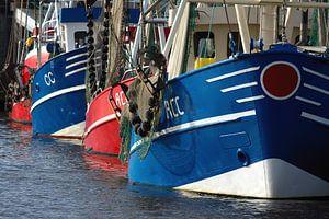 Vis trawlers afgemeerd in de haven