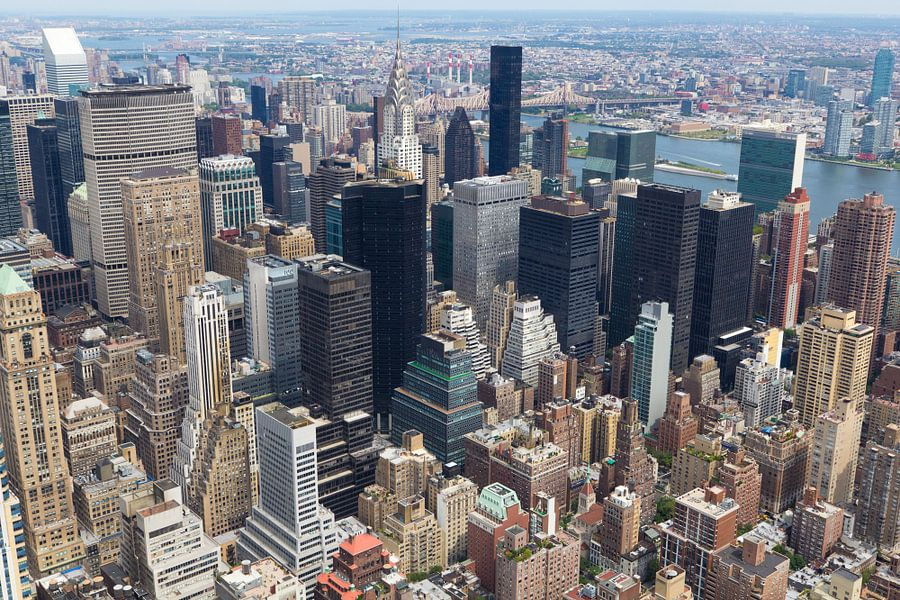 New York van Teuni's Dreams of Reality