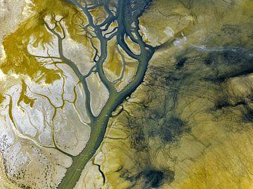Salton Sea von