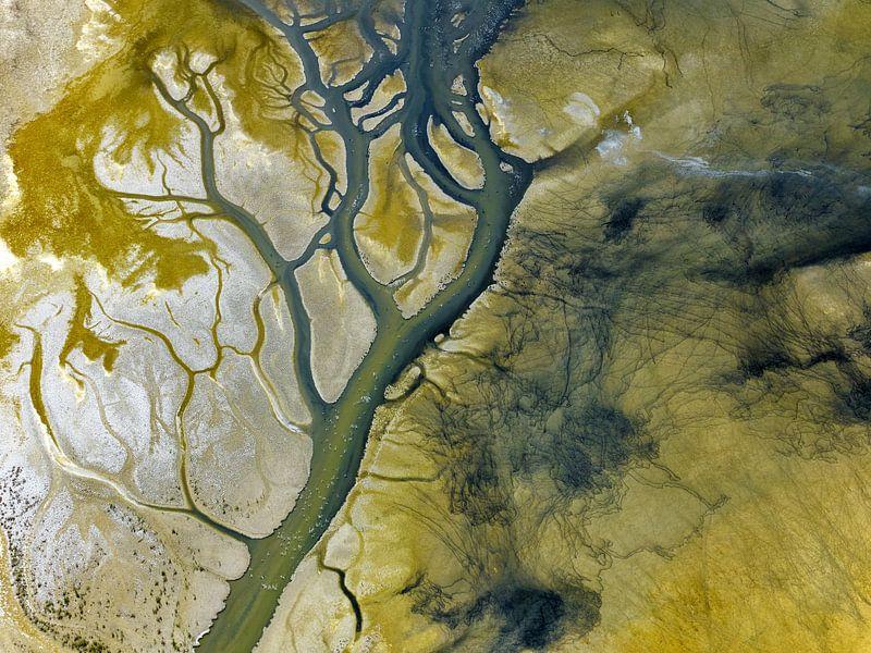Salton Sea van Marco van Middelkoop
