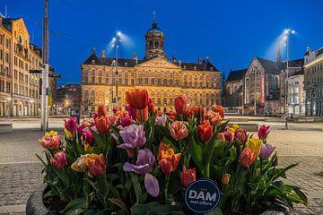 Tulipes au Palais sur le Dam à Amsterdam