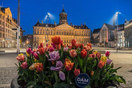 Tulpen bij het Paleis op de Dam in Amsterdam